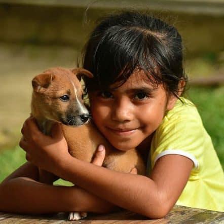 Can dogs sense a good person