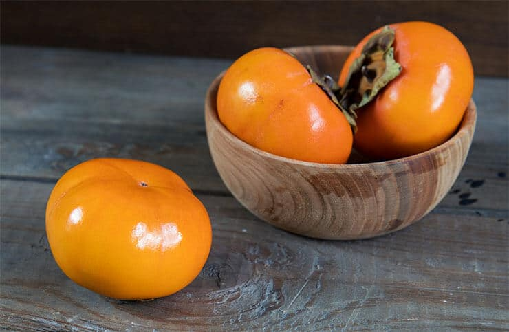 Persimmons for dogs are they healthy