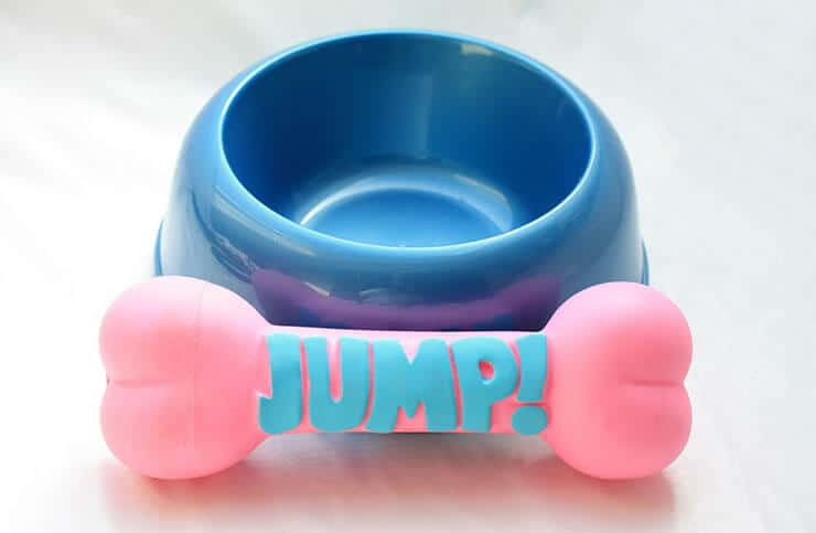 Rubber dog bowl