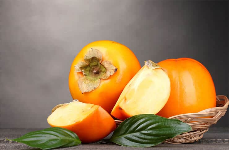 When persimmons are bad for dogs
