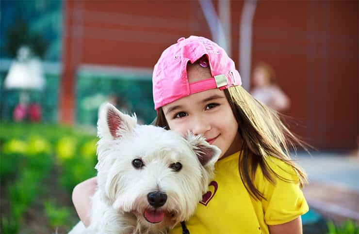 Are Westies good family dogs