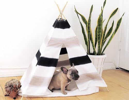 DIY pup tent